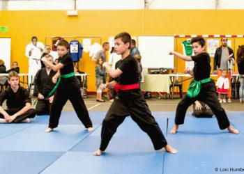 forum-des-associations-arts-martiaux